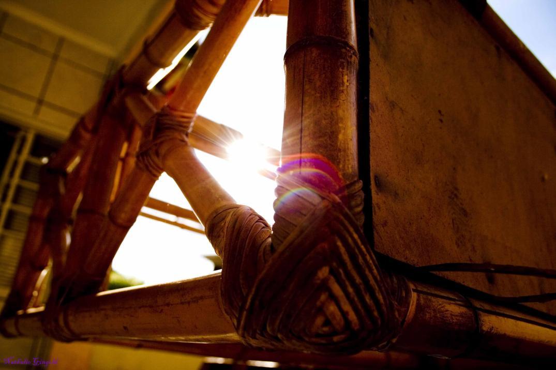 O canto de luz